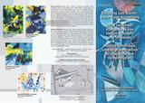 2009-05 Flyer 1